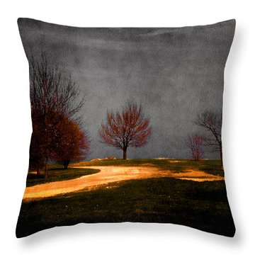 Art In The Park Throw Pillow