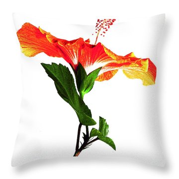 Art Orange Throw Pillow