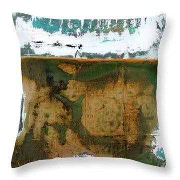 Art Print California 04 Throw Pillow
