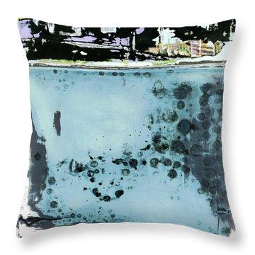 Art Print California 08 Throw Pillow