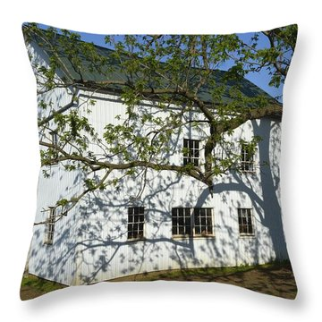 Artful Shadows Throw Pillow