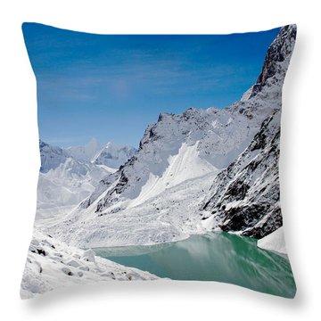 Artic Landscape Throw Pillow