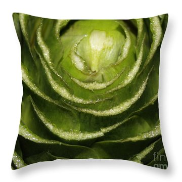 Artichoke Close-up Throw Pillow by Carol Groenen