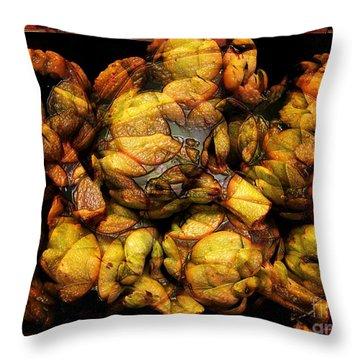 Artichoke Evolution 3 Throw Pillow