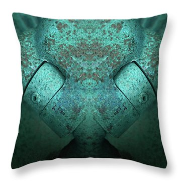 Throw Pillow featuring the photograph Artifact by WB Johnston
