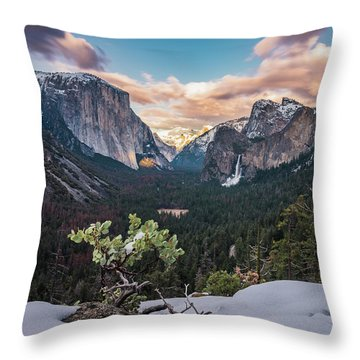 Artist Point Throw Pillow