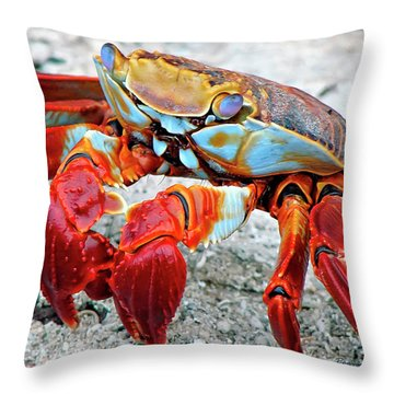 Artistic Nature Red And Blue Rainbow Crab 908 Throw Pillow