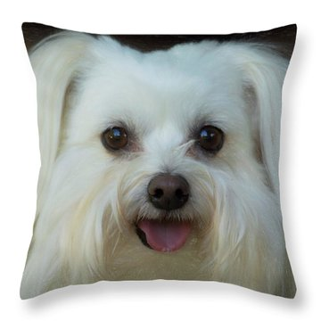 Artistic Puppy Throw Pillow