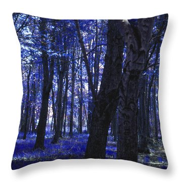 Throw Pillow featuring the photograph Artistic Tree In Blue by Michelle Audas