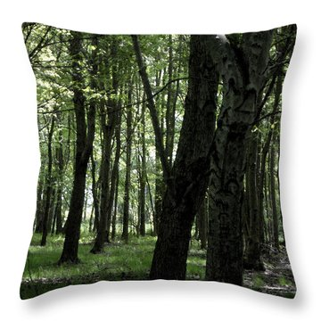 Throw Pillow featuring the photograph Artistic Tree by Michelle Audas