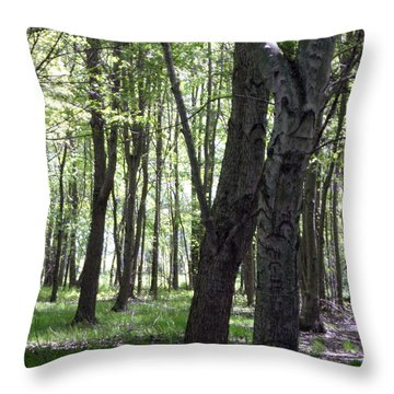 Throw Pillow featuring the photograph Artistic Tree Original by MicA