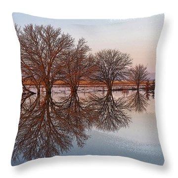 Artistic Fancy Throw Pillow