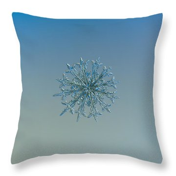 Snowflake Photo - Twelve Months Throw Pillow