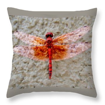 Flame Dragonfly  Throw Pillow