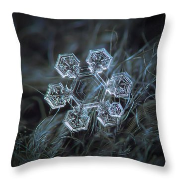 Throw Pillow featuring the photograph Icy Jewel by Alexey Kljatov