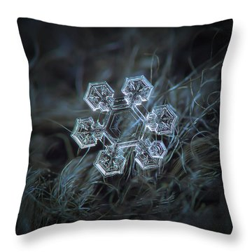Icy Jewel Throw Pillow