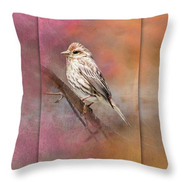 Female Sparrow On Branch Ginkelmier Inspired Throw Pillow