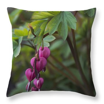 Heart Focused Throw Pillow by Karen Casey-Smith
