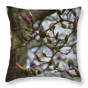 Today The World Is New Again Throw Pillow by Karen Casey-Smith