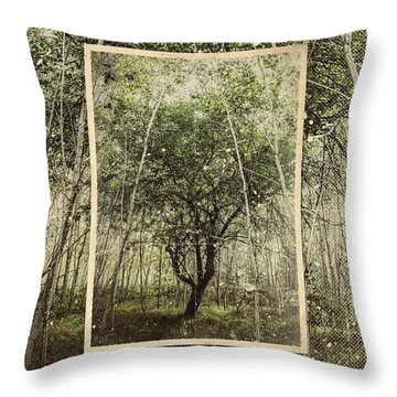 Hand Of God Apple Tree Poster Throw Pillow