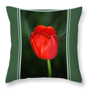 Tulip Red With A Hint Of Yellow Throw Pillow