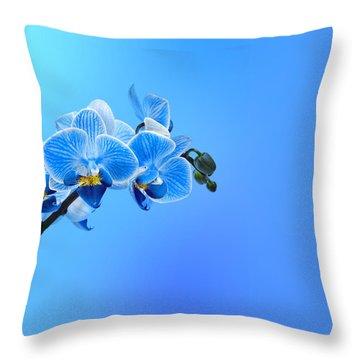 Phalaenopsis Throw Pillows