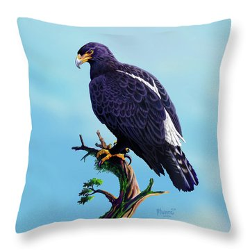 Verreaux's Eagle  Throw Pillow by Anthony Mwangi