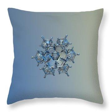 Snowflake Photo - Flying Castle Alternate Throw Pillow