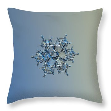 Snowflake Photo - Flying Castle Alternate Throw Pillow