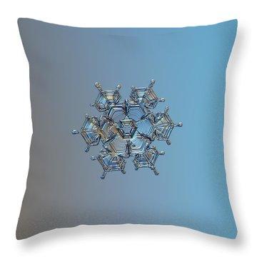 Snowflake Photo - Flying Castle Throw Pillow