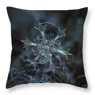 Starlight, Panoramic Version Throw Pillow