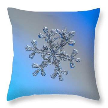 Three-in-one Throw Pillow