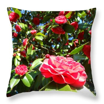 Uncommon Camellias Throw Pillow