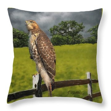 Waiting For The Storm - Red Tail Hawk Throw Pillow