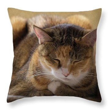 How To Meditate Throw Pillow by Karen Casey-Smith