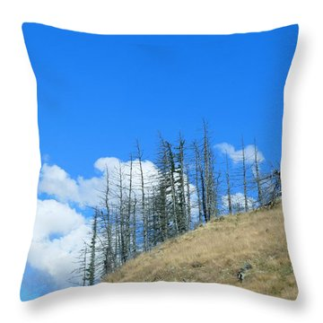 At The End Of The World Throw Pillow