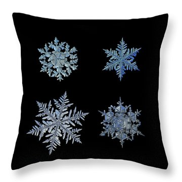 Throw Pillow featuring the photograph Four Snowflakes On Black Background by Alexey Kljatov