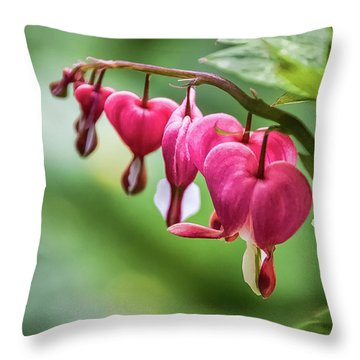Softly Lucent  -  Throw Pillow