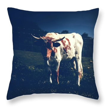 Throw Pillow featuring the photograph Midnight Encounter by Sharon Mau