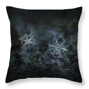 Snowflake Photo - When Winters Meets - 2 Throw Pillow