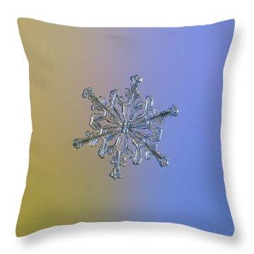 Snowflake Macro Photo - 13 February 2017 - 2 Alt Throw Pillow