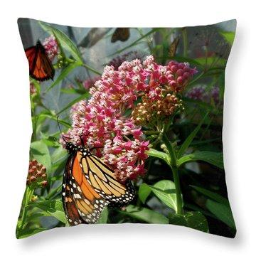 Monarch Arc Throw Pillow