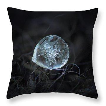 Drop Of Ice Rain Throw Pillow