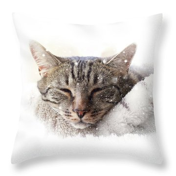 Cat And Snow Throw Pillow