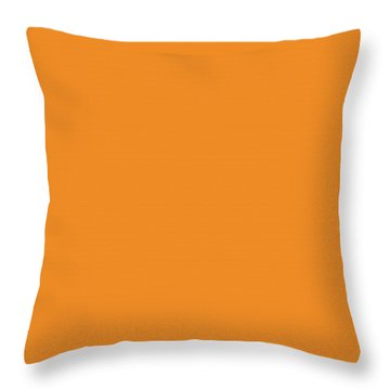 It's Never Too Late To Stop Throw Pillow