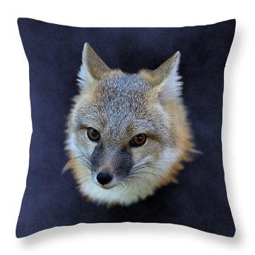 Foxburst Throw Pillow
