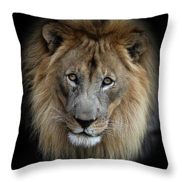Sweet Male Lion Throw Pillow
