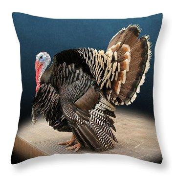 Male Turkey Strutting Throw Pillow