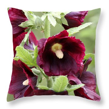 Red Hollyhock Flowers Throw Pillow