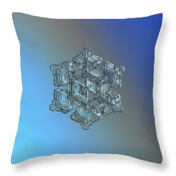 Real Snowflake - 05-feb-2018 - 5 Throw Pillow